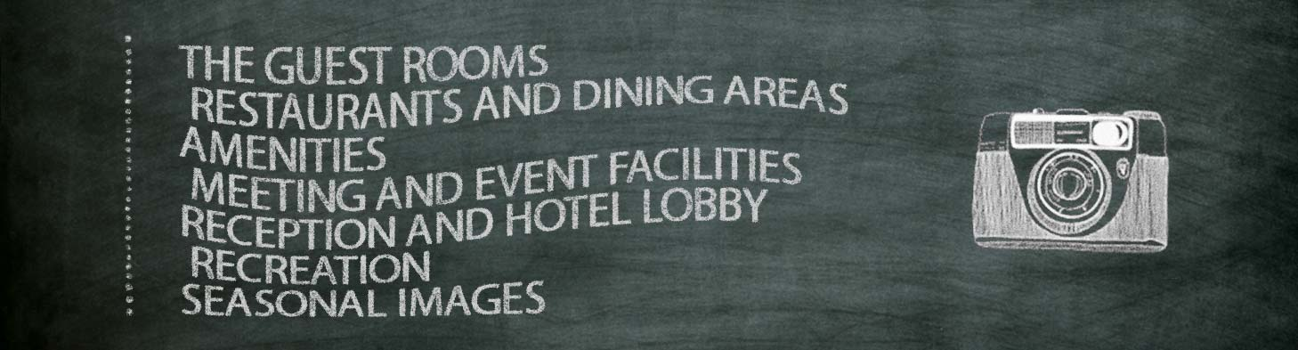 Knowledge Hospitality Photography Infographic